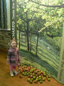Cornish Orchards display board