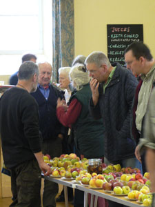 People learning about apples from Jim Stephens at Duchy Nursery